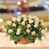 Fresh Peach Roses Basket