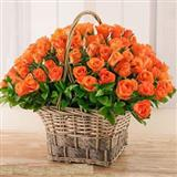 Basket of Orange Roses