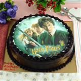 Harry Potter Cake - 3 Kg