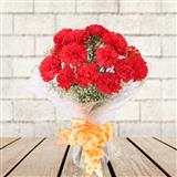 Lovely Red Carnations