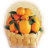 12 Pieces Orange Basket