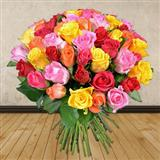Send 40 Multicoloured Roses Roses to Bhavnagar