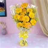12 Yellow Gerberas Bunch
