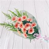 12 Peach Gerbera Bunch