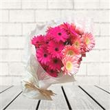 Pink Gerbera Bunch