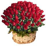 100 Red Roses in a Basket