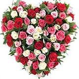 Send Shades of Love Roses to Bhavnagar