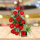 12 Red Gerbera Basket (Midnight)